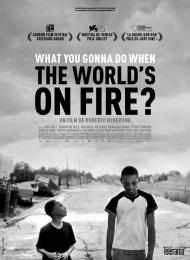 Affiche du film What You Gonna Do When the World's on Fire ?