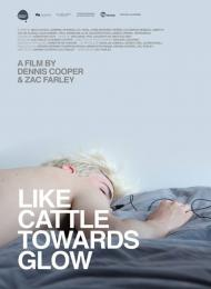 Affiche du film Like Cattle Towards Glow