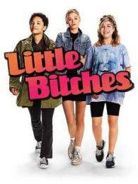 Affiche du film Little bitches