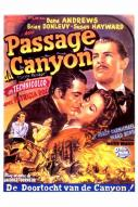 Affiche du film Passage du canyon (Le)