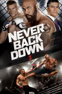 Affiche du film Never Back Down 3