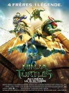 Affiche du film Ninja Turtles 3D