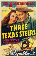 Affiche du film Three Texas steers