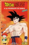 Affiche du film Dragon Ball Z : À la poursuite de Garlic