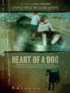 Affiche du film Heart of a Dog