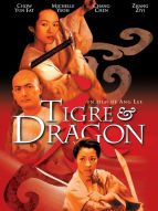 Affiche du film Tigre & Dragon