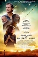 Affiche du film Same Kind of Different as Me