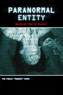Affiche du film Paranormal entity