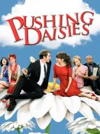 Affiche du film Pushing Daisies (Série)