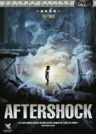 Affiche du film Aftershock