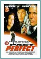 Affiche du film Past Perfect