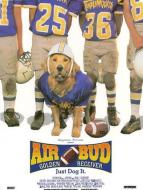 Affiche du film Air Bud 3