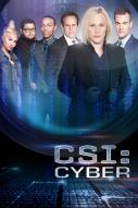 Affiche du film Les Experts : Cyber (Série)