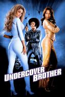 Affiche du film Undercover brother