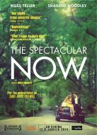 Affiche du film The Spectacular Now
