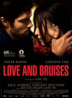 Affiche du film Love and bruises
