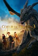 Affiche du film Coeur de dragon 3 - La malédiction du sorcier