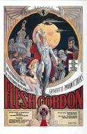Affiche du film Flesh Gordon