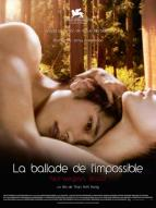 Affiche du film Ballade de l'Impossible - Norwegian Wood (La)