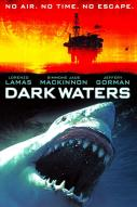 Affiche du film Dark waters