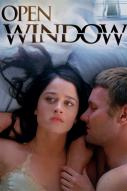 Affiche du film Open window