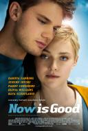 Affiche du film Now is Good