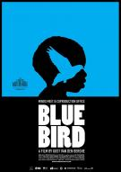 Affiche du film Blue Bird