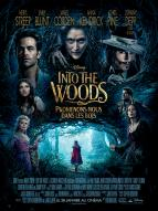 Affiche du film Into the Woods