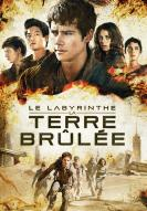 Photo du film Le Labyrinthe : La Terre brûlée -