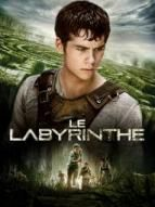 Photo liste La saga Le Labyrinthe